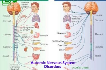 Treatment-Automic-Nervous-System-Disorders